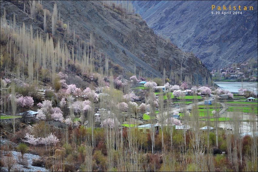 Gupis-Ghizer Valley